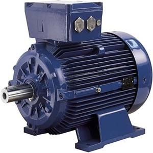 Marelli Exproof Motor